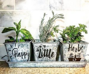 herbs in 3 pots that say happy little herbs on tray