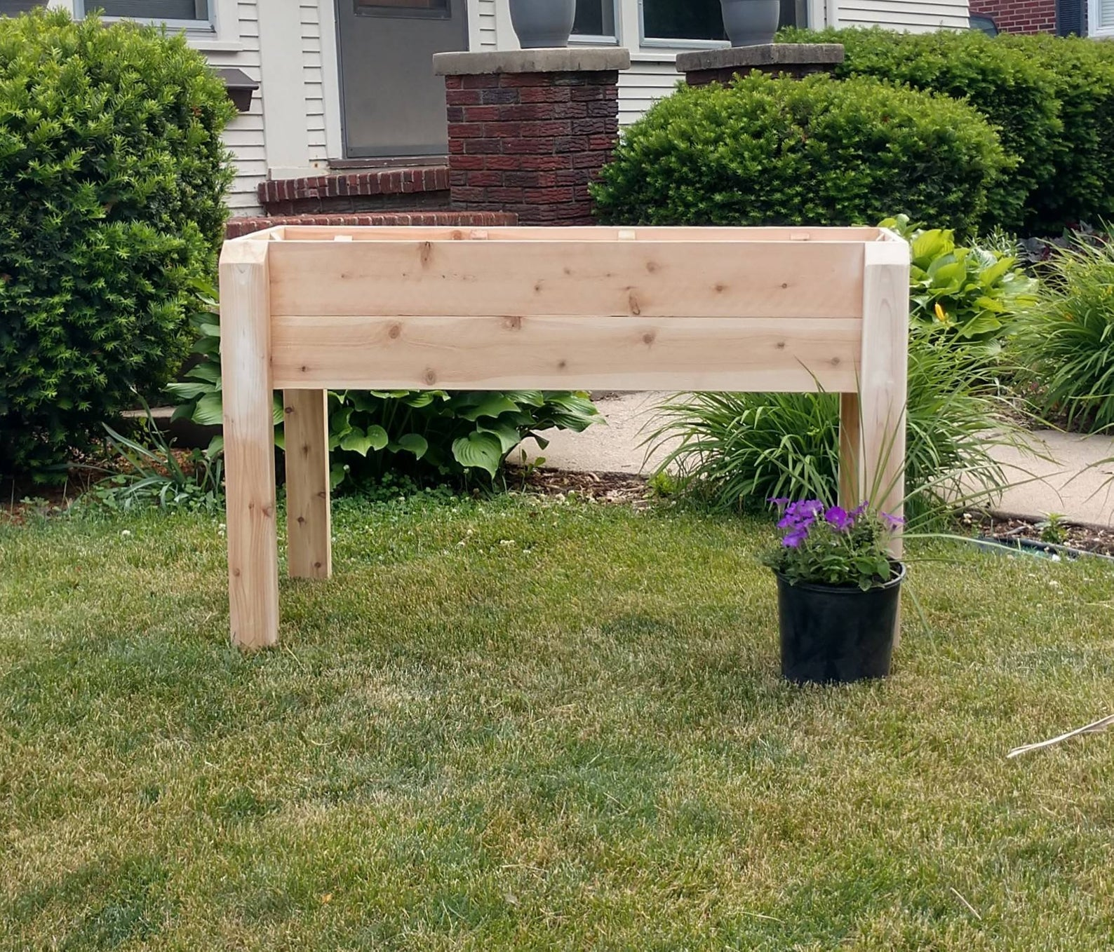 raised cedar planter outside
