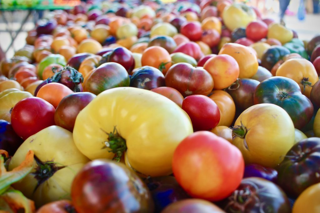 many multicolored heirloom tomatoes